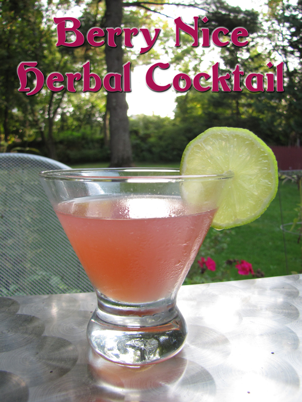 Berry Nice Herbal Cocktail