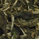 Special Snow Dragon Green Tea